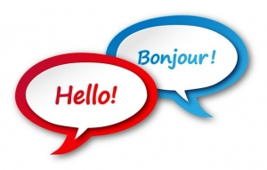 ENGLISH-FRENCH TRANSLATION Icon (language speech bubble button)